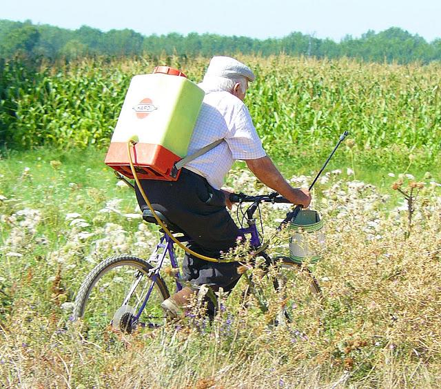 El paisanaje de la comarca es de una idiosincrasia muy particular y muy ciclista